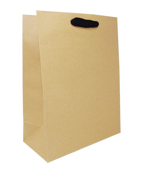 10 x 5 x 13 Natural Kraft Ribbon Handle Eurototes (Case of 100)
